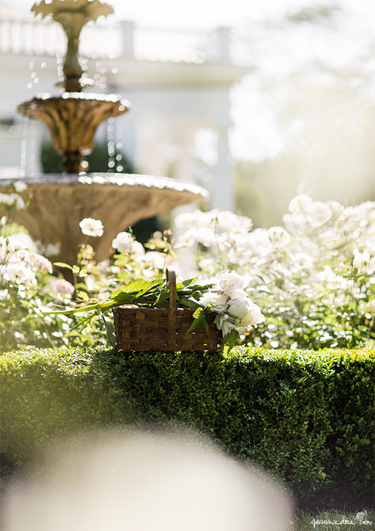 Aerin Lauder Hamptons House on Rhyme & Reason