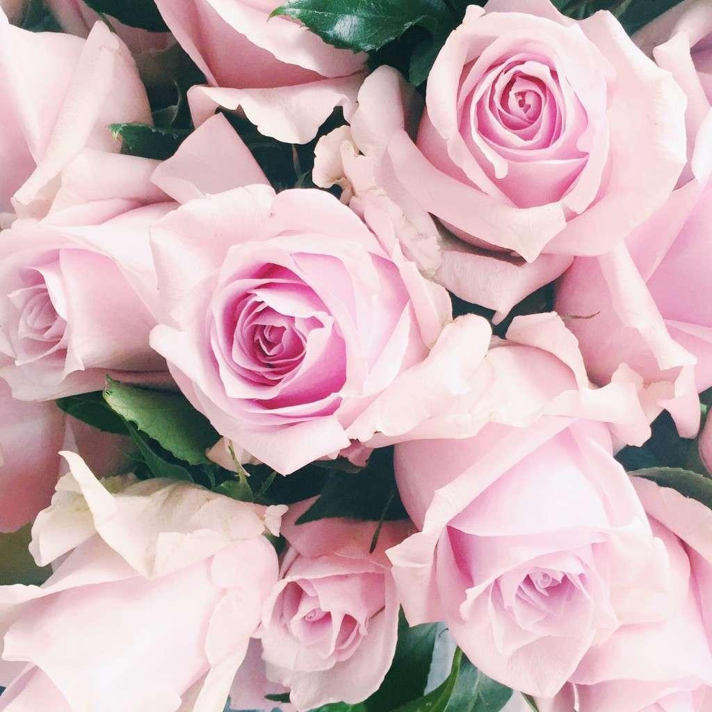 Kate Spade NYFW Roses on Rhyme & Reason Fashion Blog