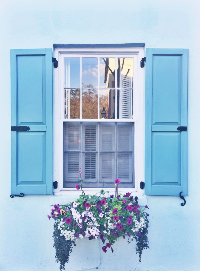 Blue Window Box in Charleston on Rhyme & Reason