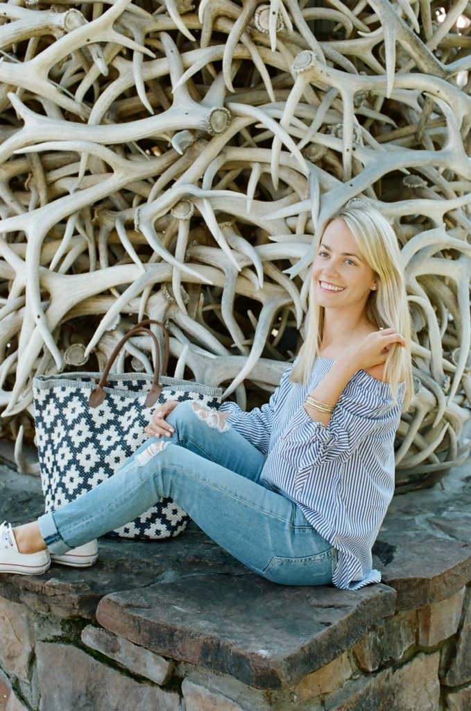 Annie Selke Tote Bag in Jackson Hole