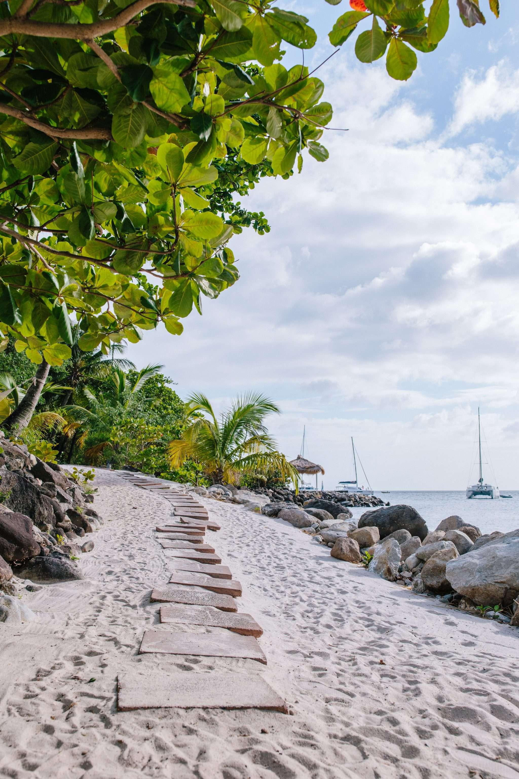 Beach Path on St. Lucia // Rhyme & Reason