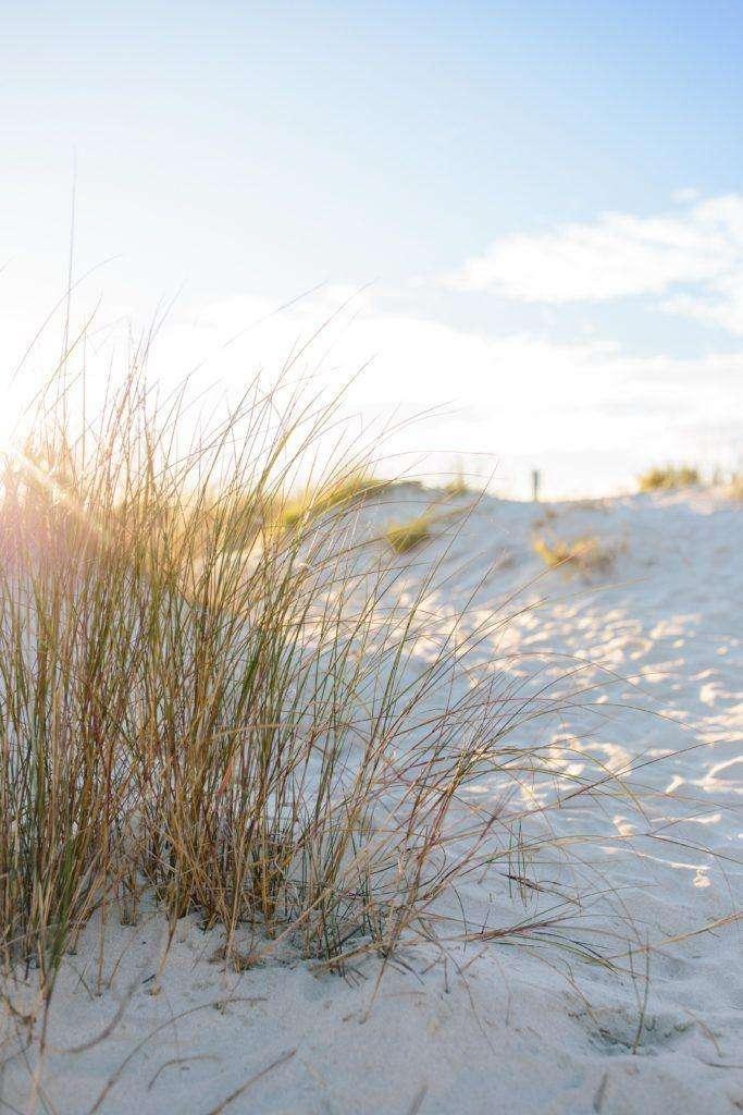 The best beaches in Charleston, SC | Rhyme & Reason